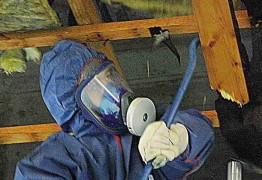 Mann in blauem Schutzanzug, entfernt PCP aus Holz